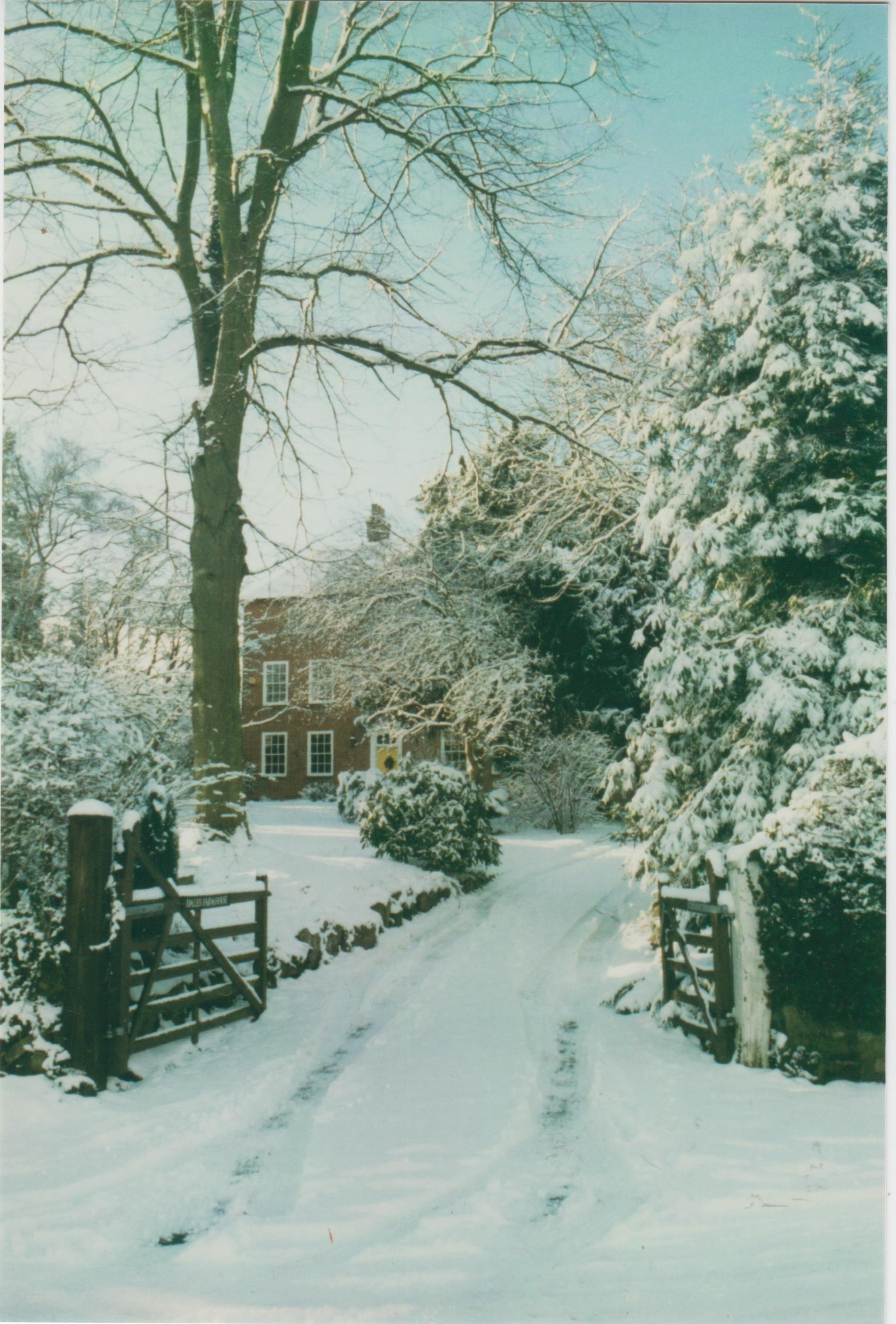 dale-farm-winter-scene-001.jpg