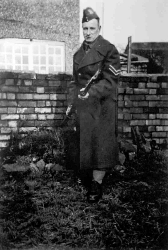 WEG_Home_Guard.jpg